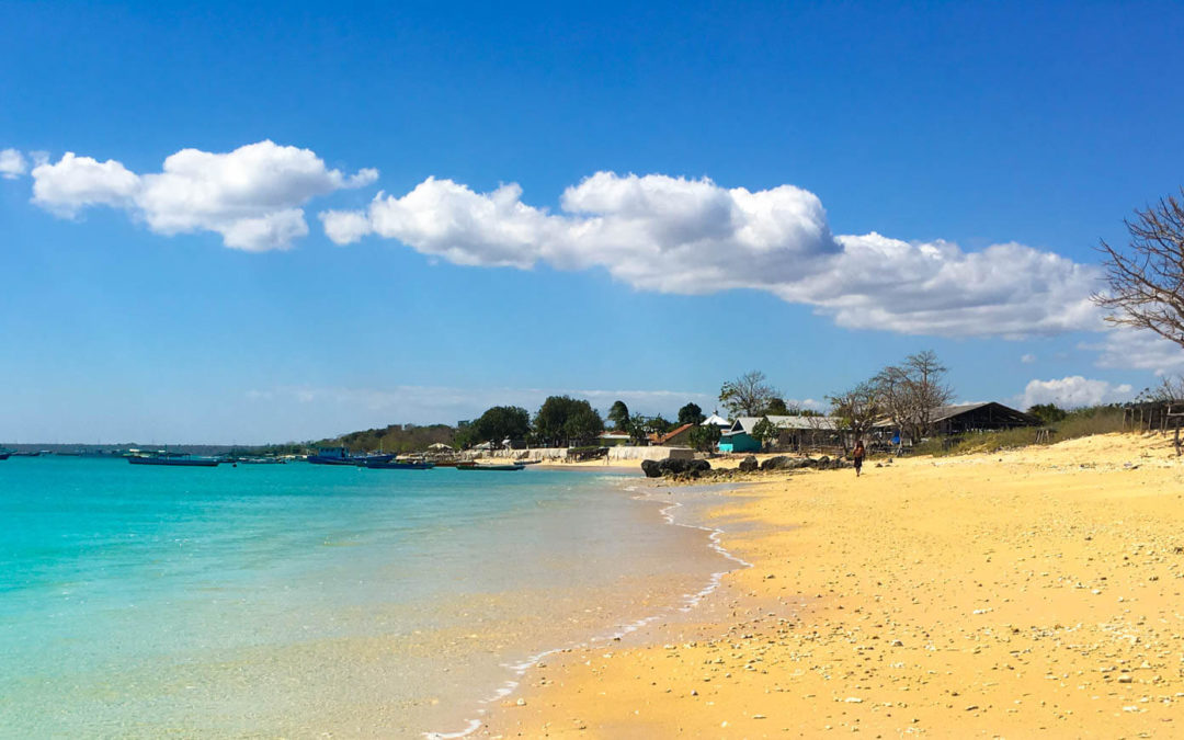 West Timor: Crystal Pools and the Best Pork in the World