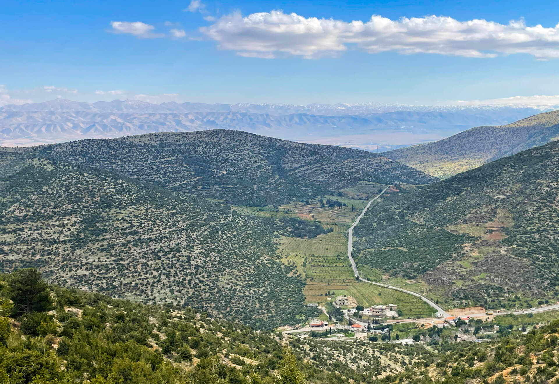 Looking down from mountains covered in lush vegetation towards the Bekaa valley.